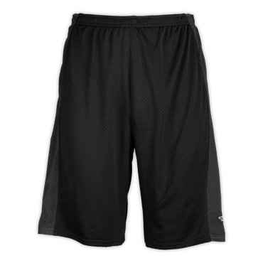 photo: The North Face The Swoop Mesh Short active short