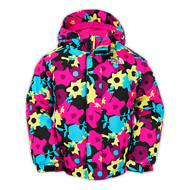 photo: The North Face Denay Insulated Jacket synthetic insulated jacket