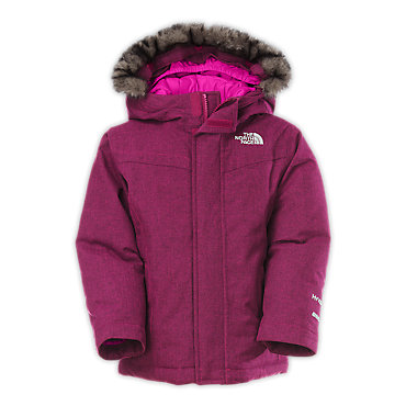 The North Face Greenland Down Jacket