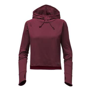 The North Face Motivation Hoodie