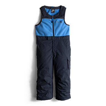 The North Face Insulated Bib