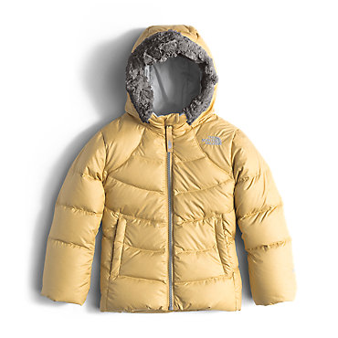 The North Face Polar Down Parka