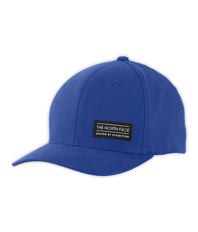 SBE FLEX BALL CAP