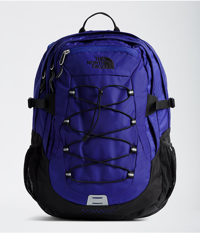 a0513ff403e Borealis Classic Backpack | The North Face