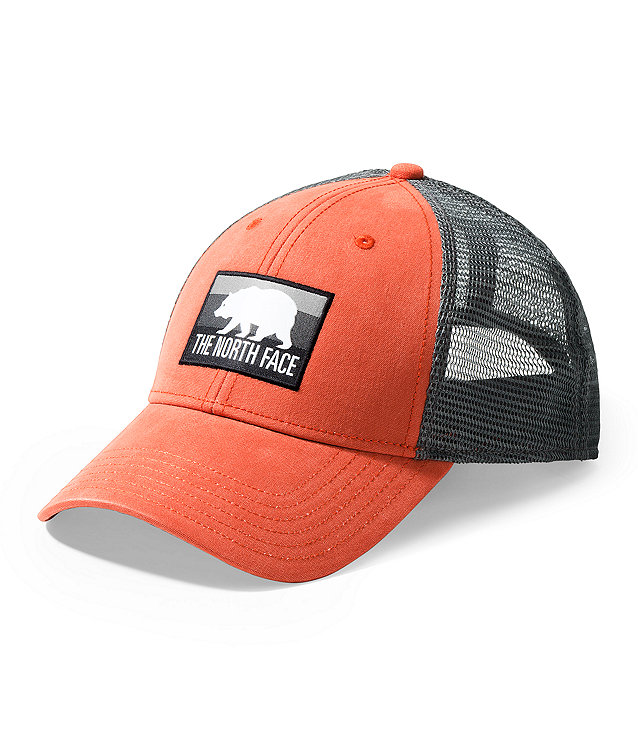 PATCHES TRUCKER HAT