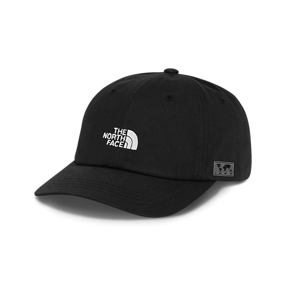 1603fa9bb IC Ball Cap | The North Face 2018 International Collection