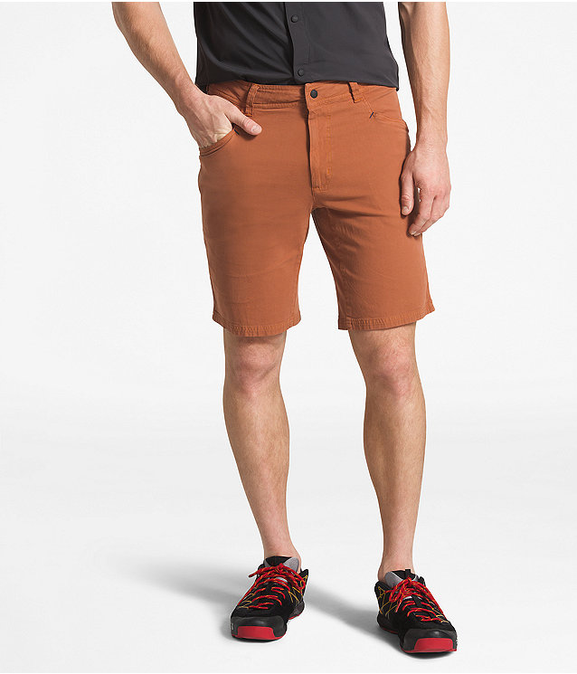 Men's North Dome Shorts