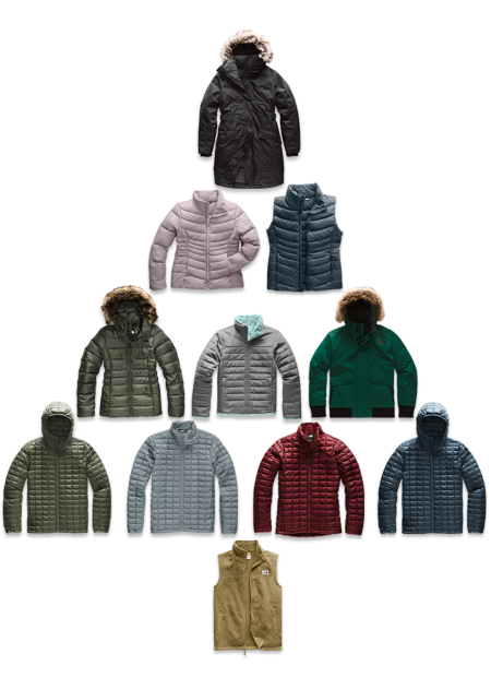 The North Face Iconic Products | Free Shipping