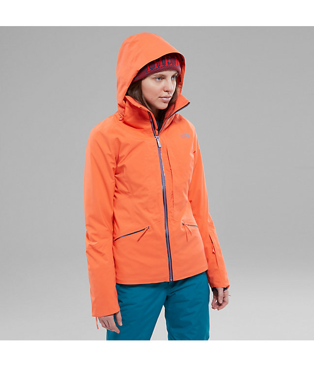 Veste Anonym | The North Face