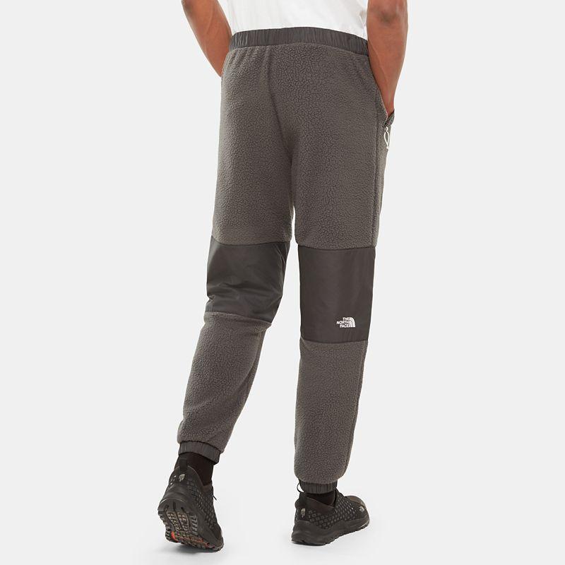 Denali fleece-broek voor heren-