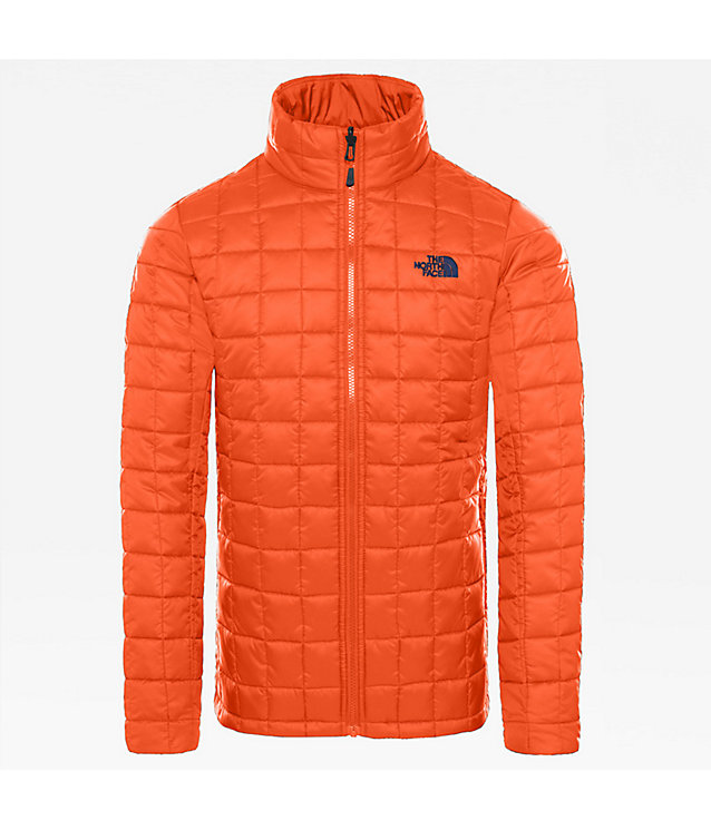 Zip-In INS JKT voor heren | The North Face