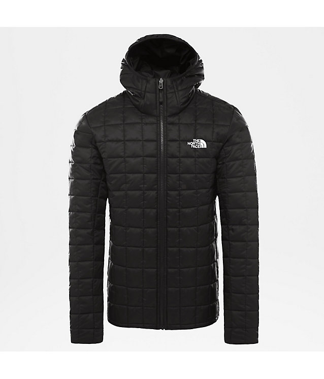 HERREN KAPUZENJACKE AUS SYNTHETIKMATERIAL MIT EINZIPPSYSTEM | The North Face