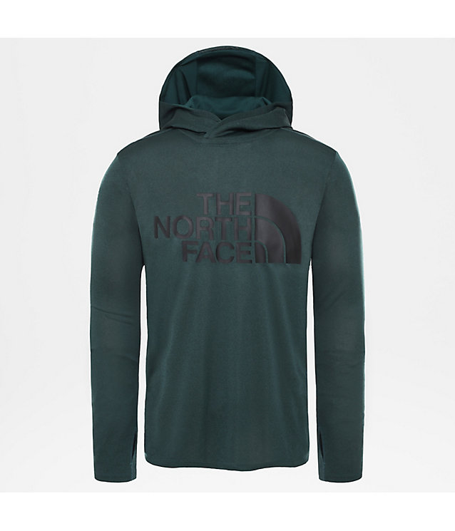 Herren 24/7 Big Logo Kapuzenpullover | The North Face
