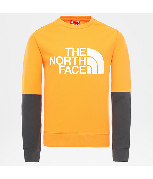 Youth Drew Peak Light Pullover | The North Face