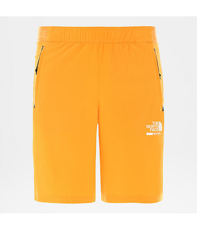 Herren Glacier Shorts | The North Face