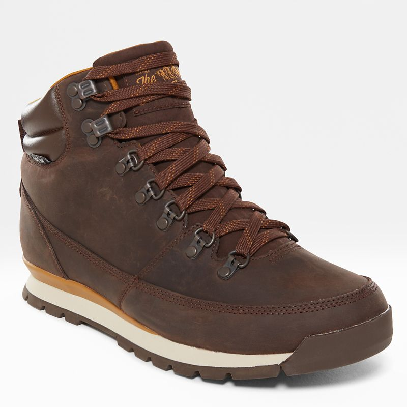 Back-To-Berkeley Redux Boots van leer voor heren-