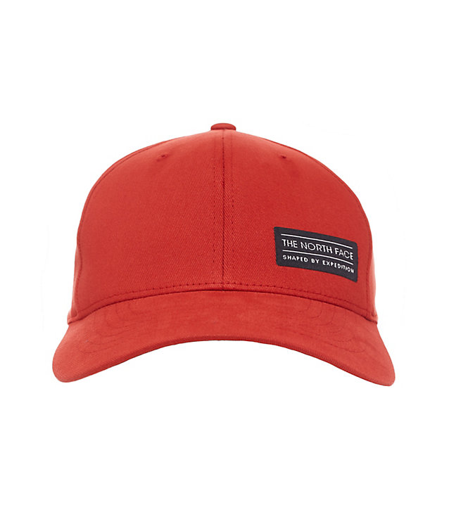 Sbe Flex Ball Cap | The North Face