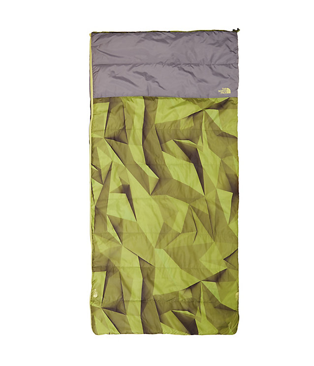 Homestead Twin 40/4 Sleeping Bag | The North Face