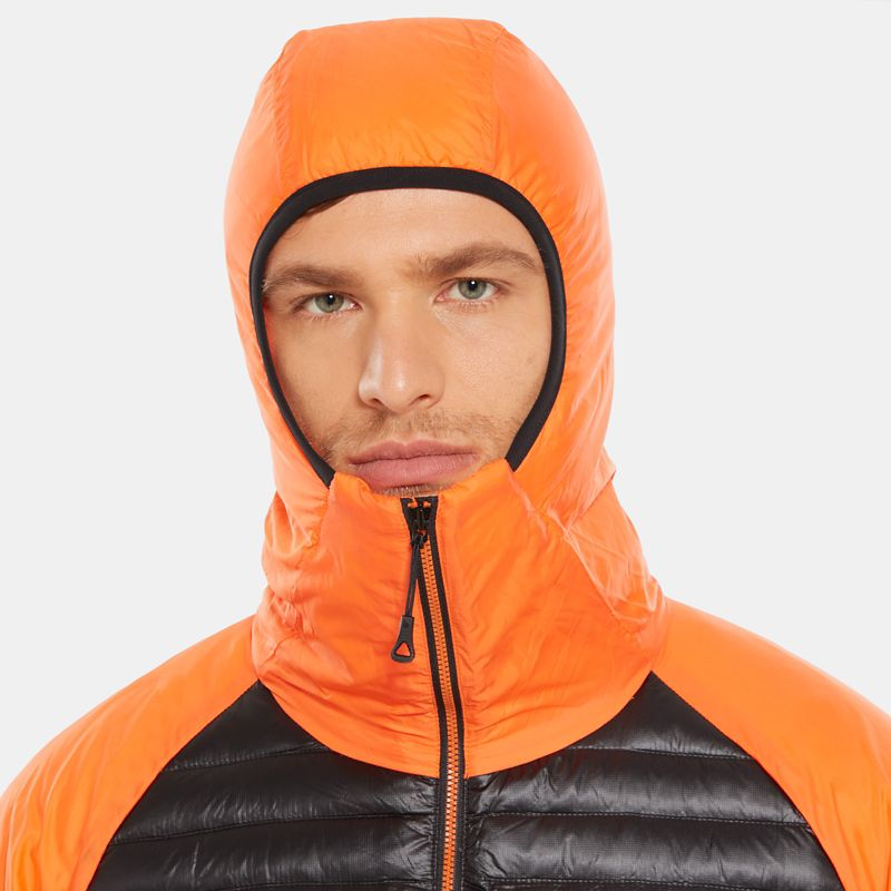 Veste à capuche Verto Prima pour homme-